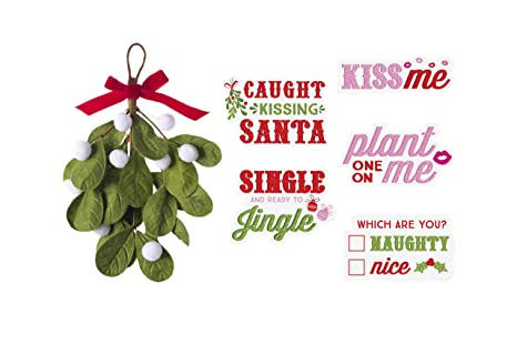 Amazon.com: Pearhead Mistletoe Kissing Booth, Everything You Need to Set Up Your Own Kissing Photo Booth! Includes Felt Mistletoe,