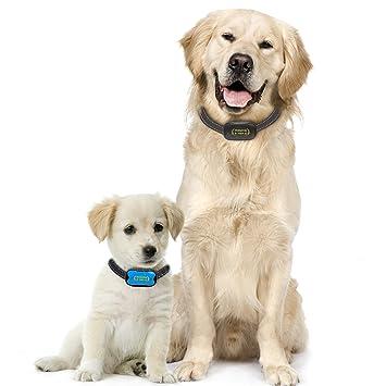 Premium Paws Anti Bark Dog Collar Advanced Intelligence Stop Dogs