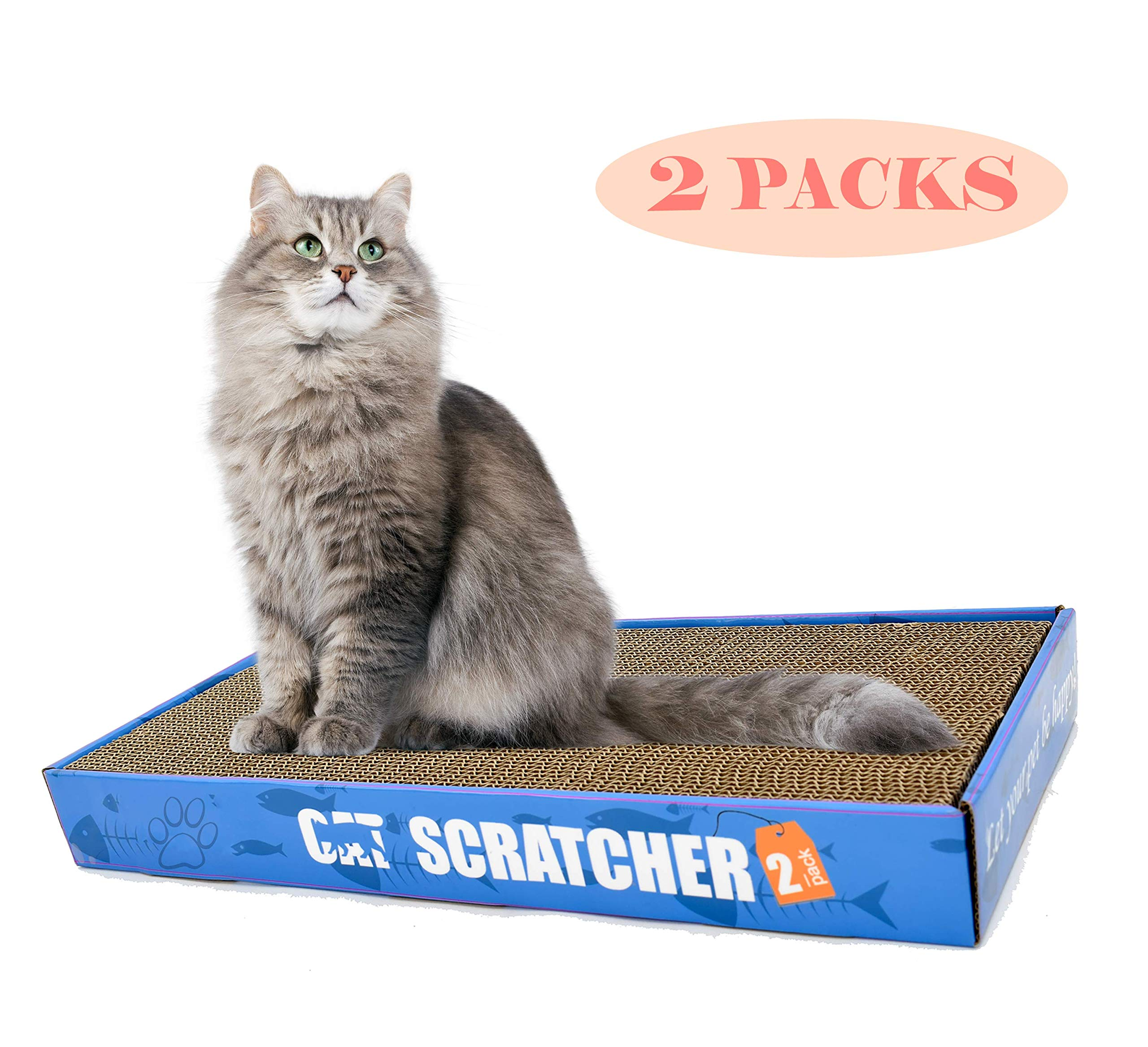 Cat Scratching Post 2 in 1 with Catnip Kitten Scratcher Toy 2 Packs Pad Cardboard and Refill (2 Packs)