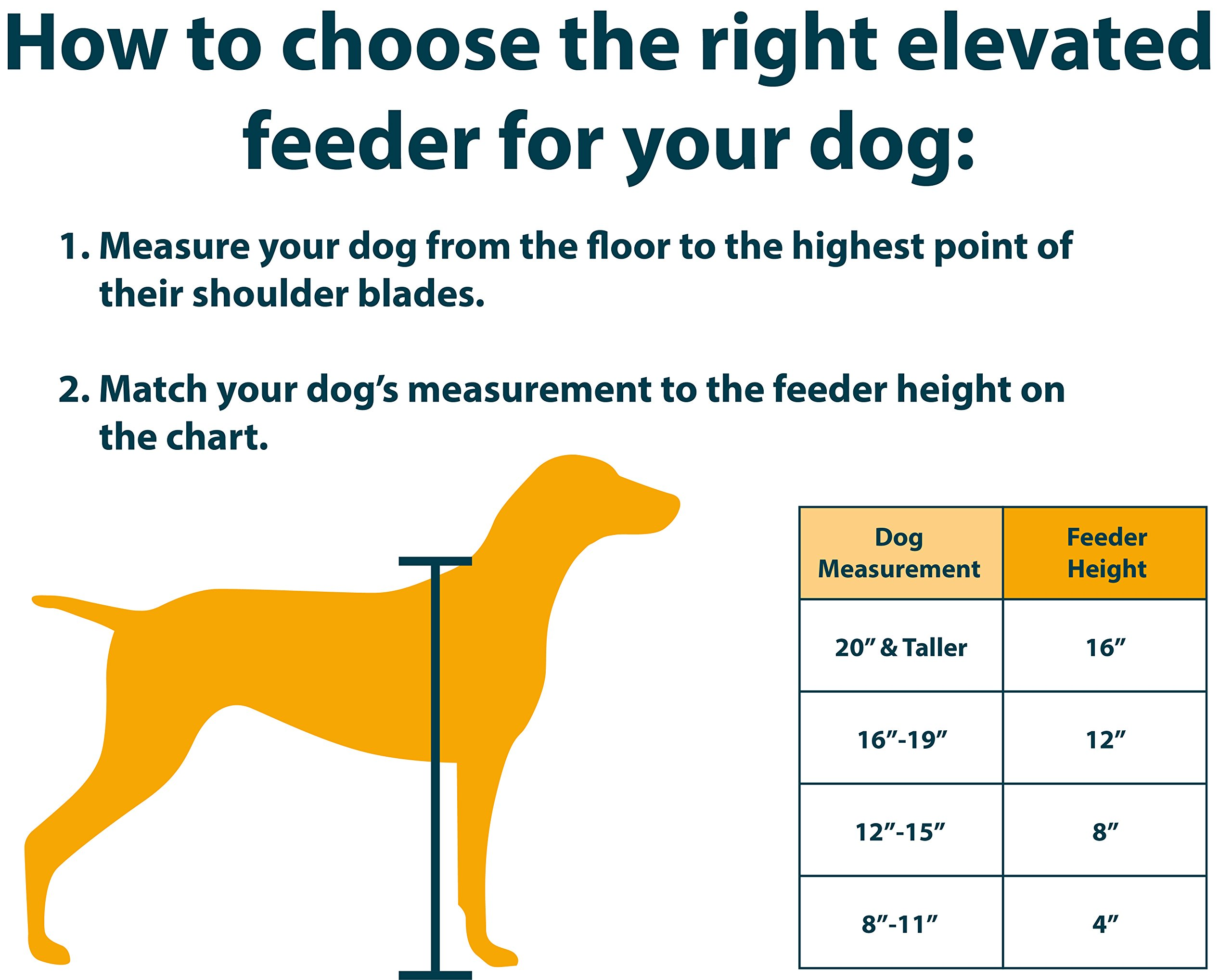 Our Pets Signature Series Elevated Dog Feeder 4''