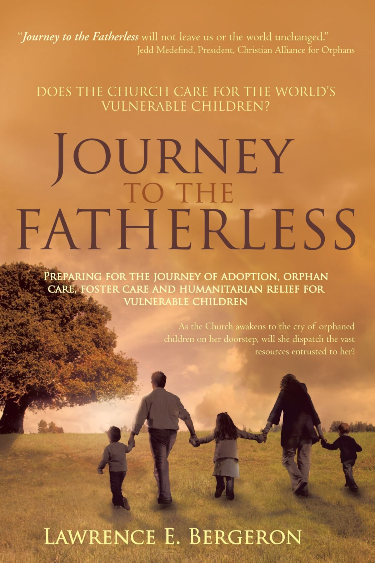 Download Journey to the Fatherless: Preparing for the Journey of Adoption, Orphan Care, Foster Care and Humanitarian Relief for Vulnerable Children pdf epub
