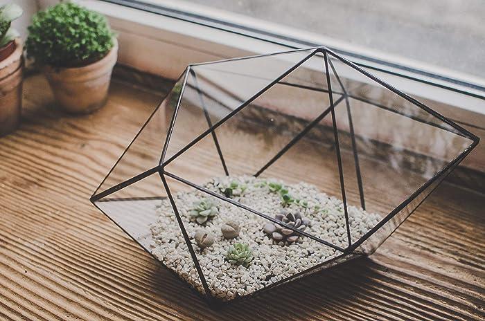 Amazon Com Terrarium Large Strange Shape Stained Glass Terrarium