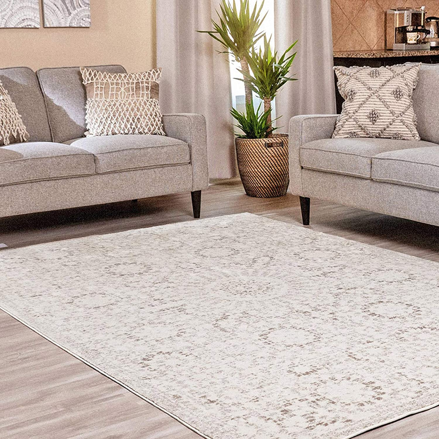 Ophanie Modern Boho Chic Area Rug Carpet, Thick Area Rugs for Living Room, Dining Room, Bedroom, Office, 6' x 9', Beige/Grey