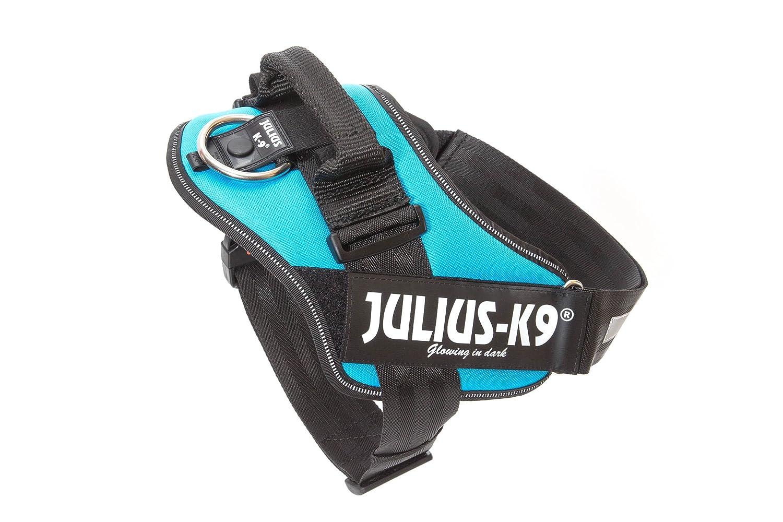 acquamarina 2 colore taglia JULIUS K-9 Pettorina IDC