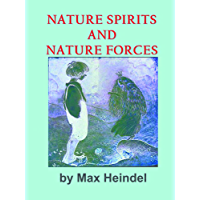 NATURE SPIRITS AND NATURE FORCES (English Edition)