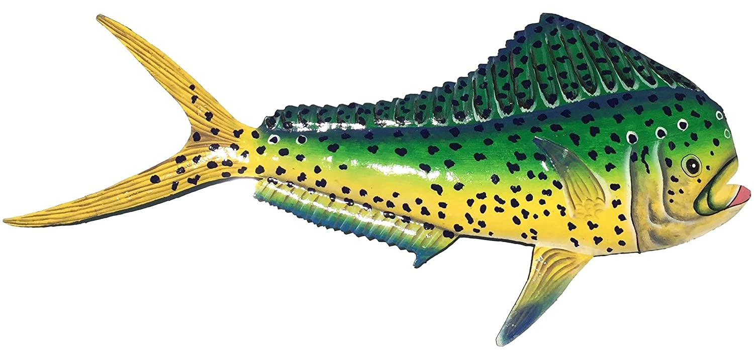 Amazon.com: Mahi - Dolphin - Dorado Wall Art Replica Mount - Haitian ...