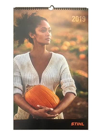 Calendrier Wurth 2020.Amazon Com Genuine Stihl 2019 Wall Calendar Office Products