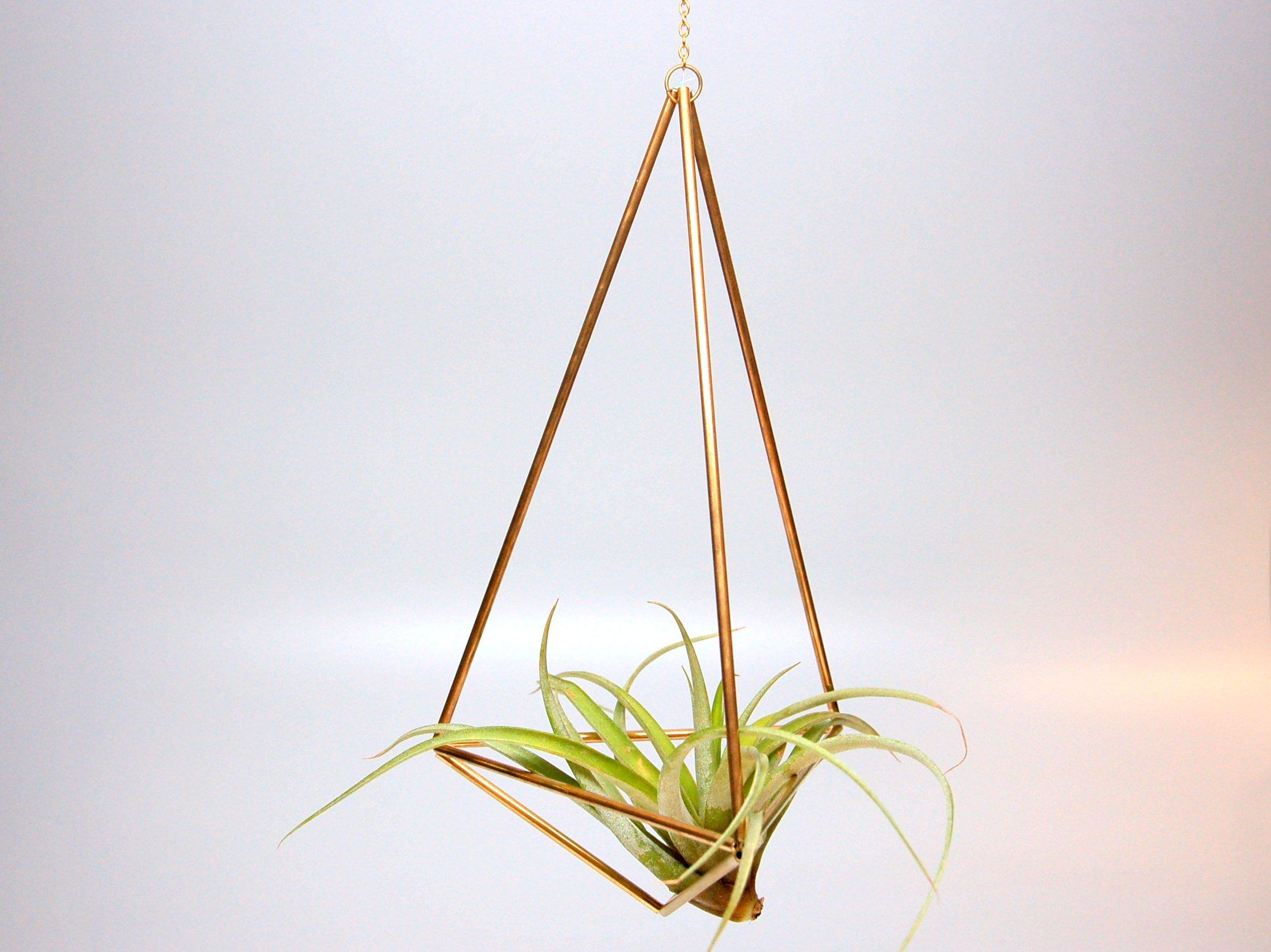 Design 22 - Large Hanging Brass Geometric Ornament (Himmeli) - Air Plant, Terrarium, Hanging Planter by The Garden Home