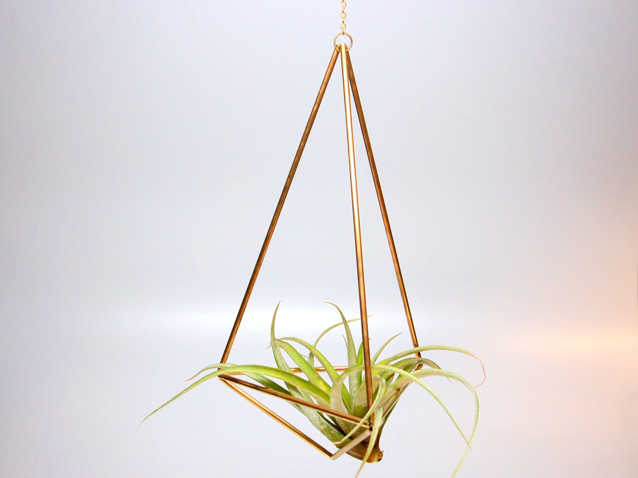 Design 22 - Large Hanging Brass Geometric Ornament (Himmeli) - Air Plant, Terrarium, Hanging Planter
