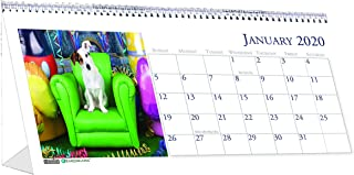 product image for House of Doolittle 2020 Monthly Desktop Tent Calendar, 8.5 x 4.5 Inches