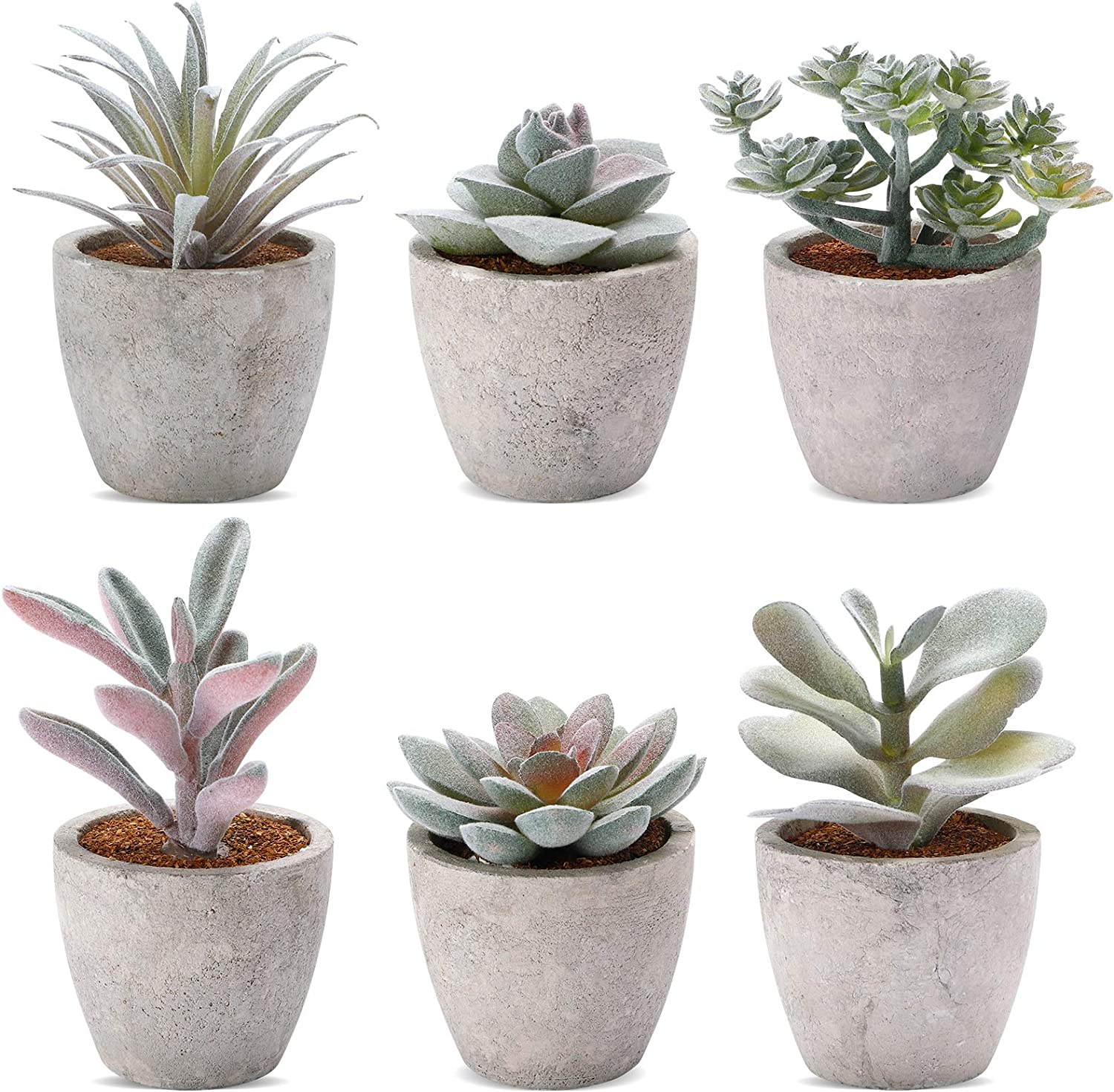 COCOBOO Artificial Succulent Set of 6 Mini Potted Fake Succulent Plants for Desk, Shelf and Office Decoration
