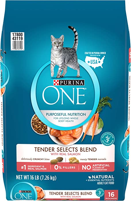 Top 9 Purina One Tender Selects Blend Salmon Cat Food