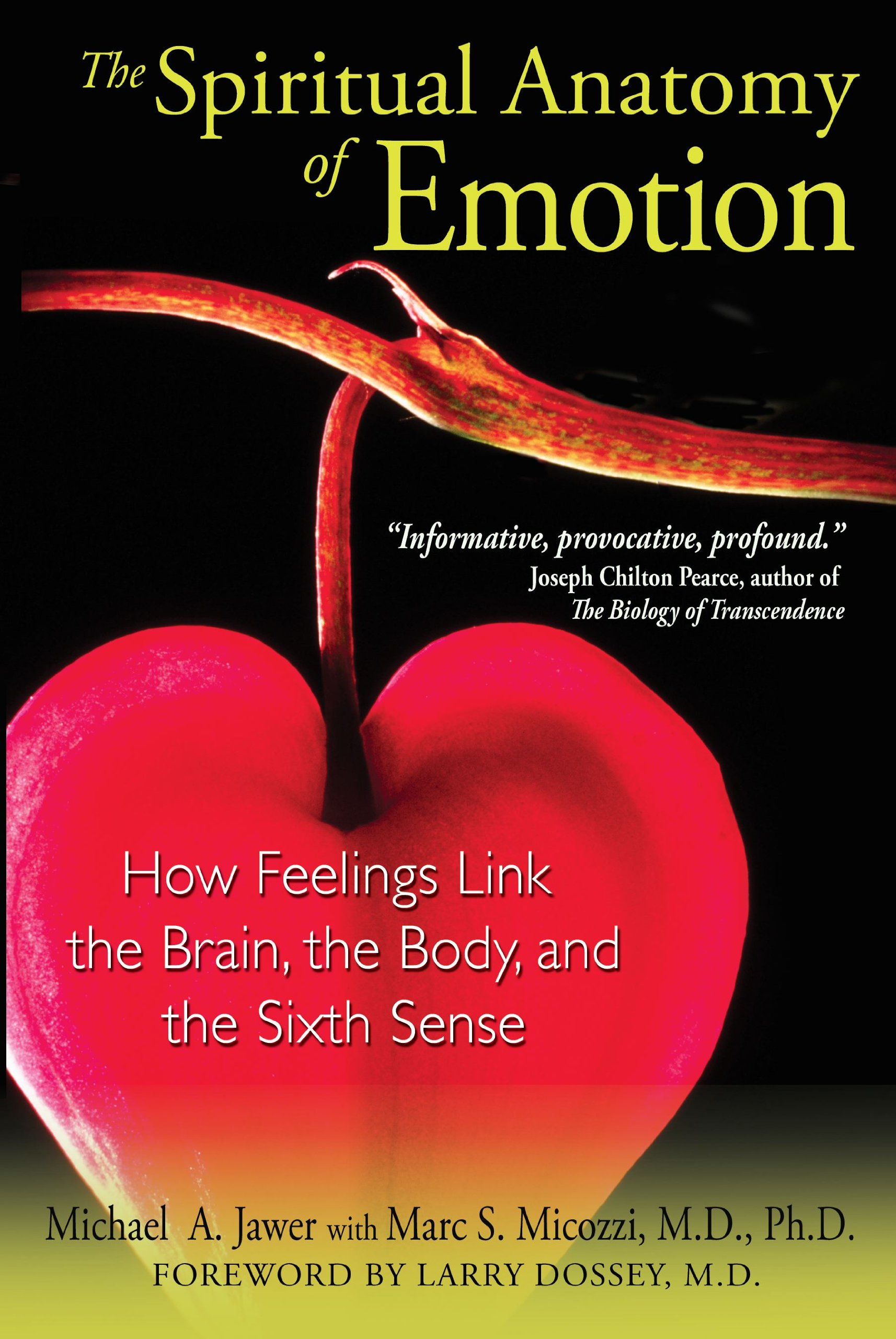 The Spiritual Anatomy Of Emotion How Feelings Link The Brain The