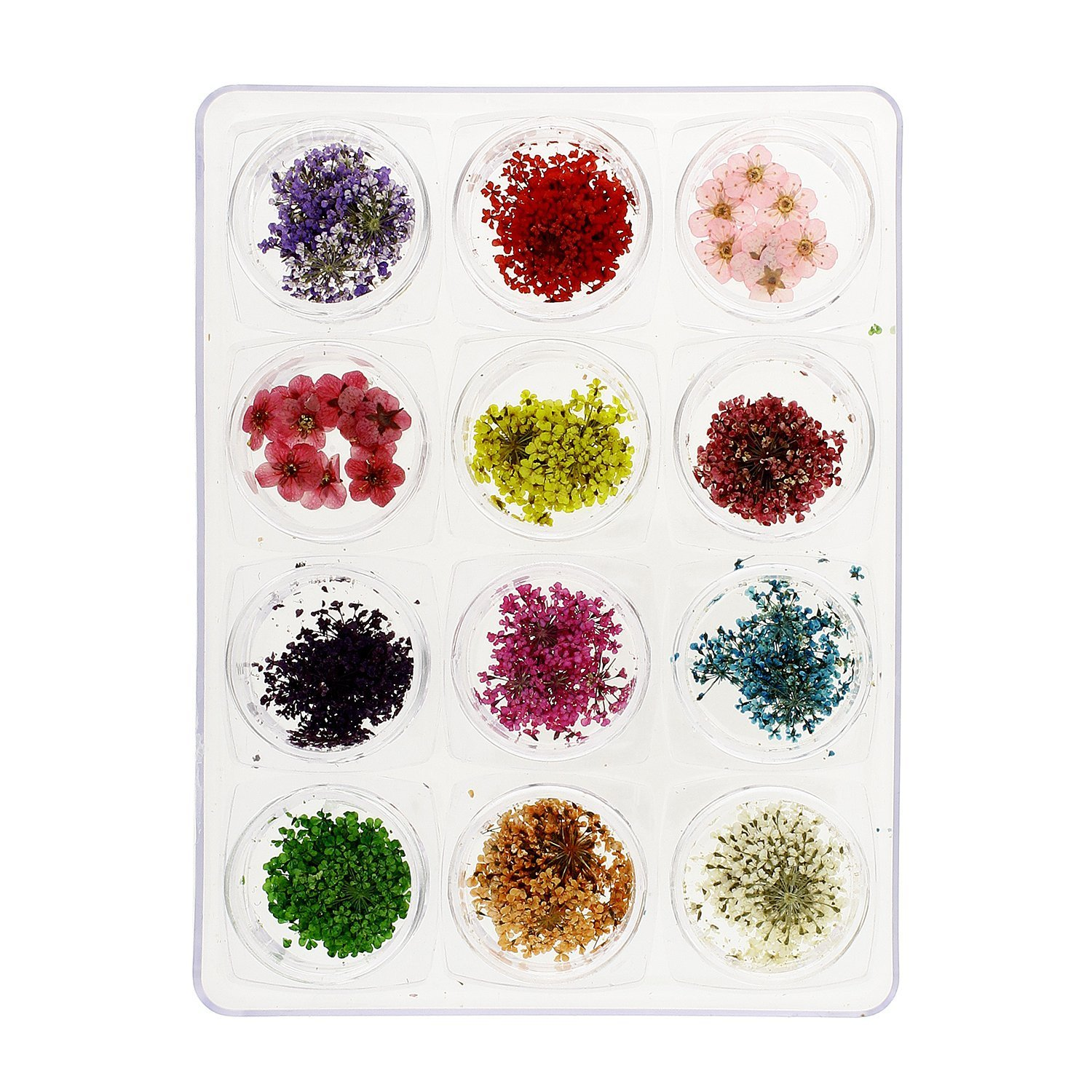 Amazon.com : MASH Nail Art Flower Petals : Nail Art Equipment : Beauty