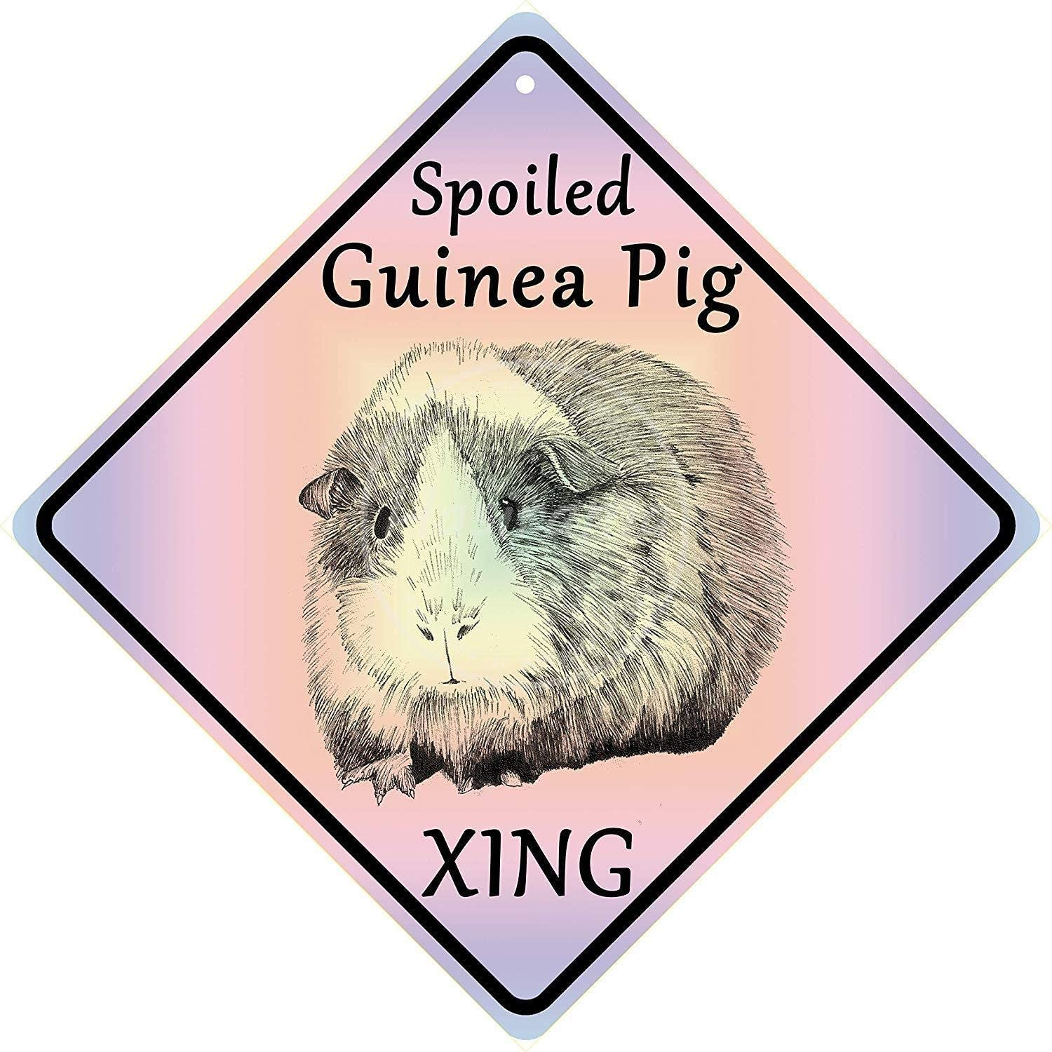 Huzkc Spoiled Guinea Pig Xing Tin Wall Sign Metal Poster Iron Painting Retro Wall Decor Vintage Band Hanging Plaque Yard Bar Pub Cafe Stadium Cinema Gift 12x12 inches