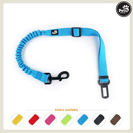 Pets&Partner® Correa de coche para perros / cinturón de seguridad ...