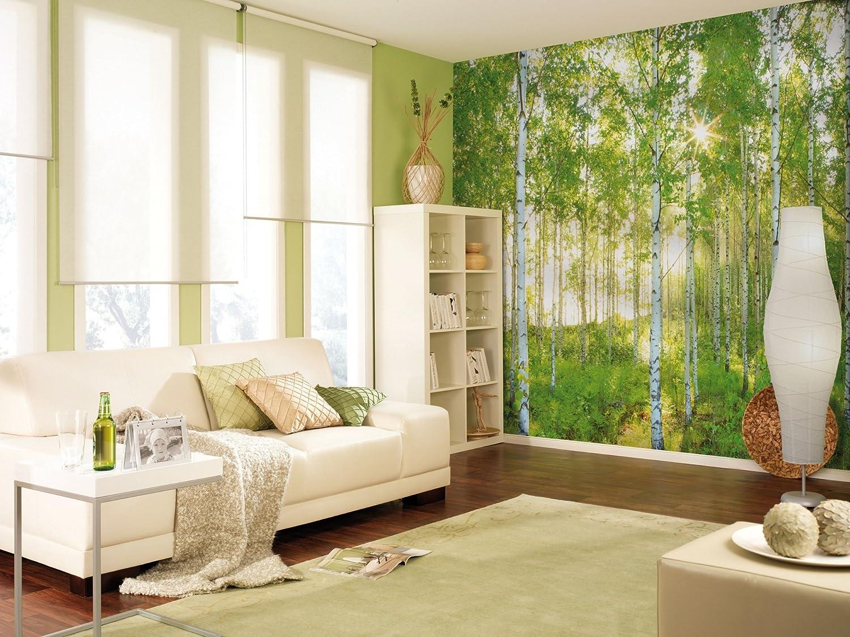 Empapelado para muralBosque de betulas primaverales de domingo National Geographic Komar paquete de 8 verde 8-519 de 368/cm x 254/cm
