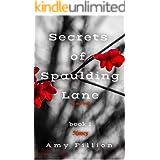 Secrets of Spaulding Lane: Nancy (Secrets of Spaulding Lane Book 1)