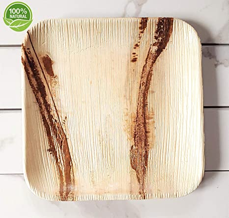 Party Plate Pack Of 150 Eco Friendly Dinnerware 50 Disposable 8 Square Palm Leaf Plates 50 Wood Forks 50 Wood Knives