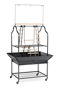 Prevue Hendryx 3180 Pet Products Parrot Playstand, Black Hammertone