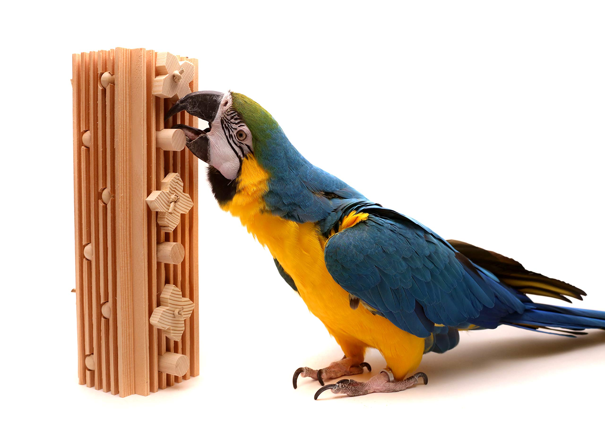 Activity Block - Large Parrot Toy by Parrot Wizard