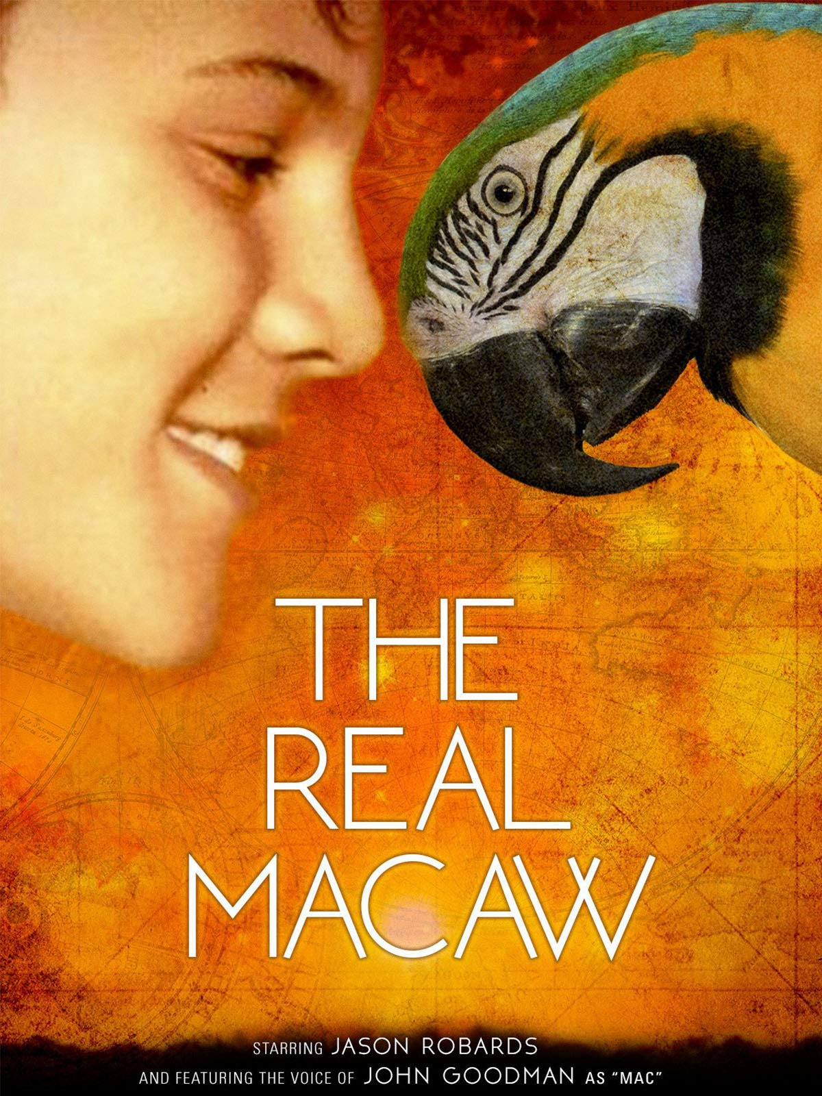 The Real Macaw on Amazon Prime Video UK