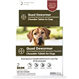 Bayer Quad Chewable Dewormer