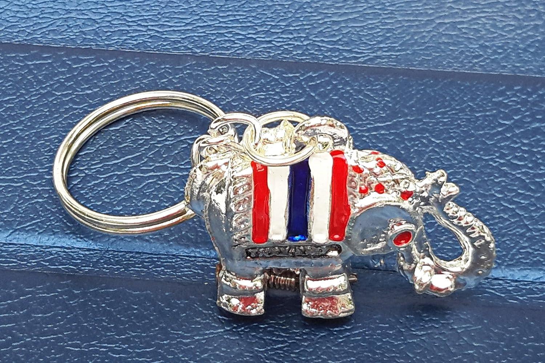 Amazon.com: Super lucky elefante llavero Secreto Hidden ...