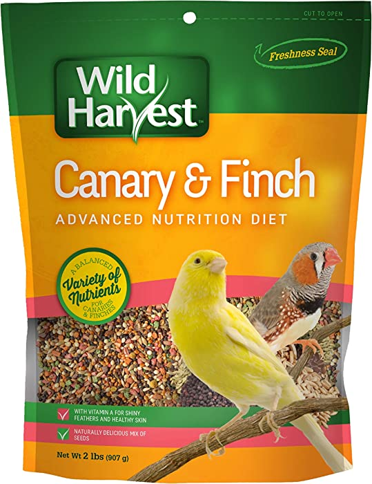 Top 7 Canary Food Seed