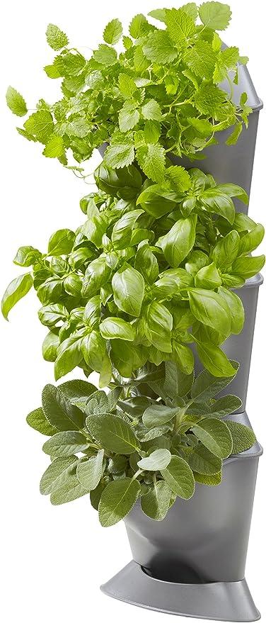 Link prodotti in legno vasi Ready for your erbe secche e fiori Brown Square 20 cm
