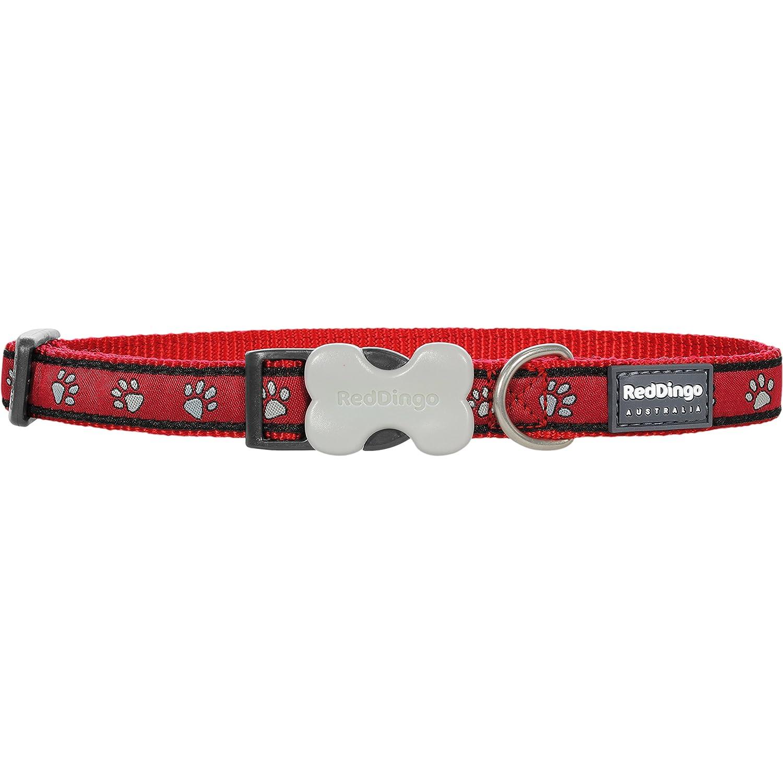 Red Dingo Collar de Perro con diseño de Huellas: Amazon.es ...