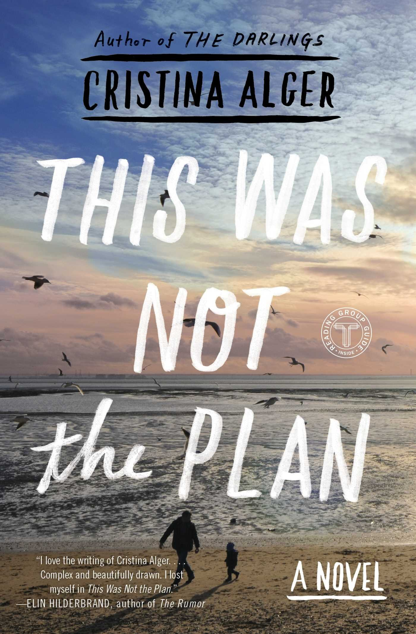 This Was Not The Plan  A Novel