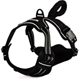 PremiPet No Pull Dog Harness, Breathable Pet Vest for Outdoor Walking Training Control for Medium Large Breeds