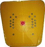 ANCS Acupressure Mat IV 2000