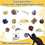 Jamboree Cat Toys Set - Variety Pack and Catnip