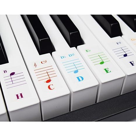 Teclados de piano para teclados 49/61/76/88, transparente y extraí