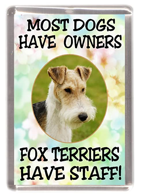 No 2 Fox Terrier Wire Christmas Labels by Starprint