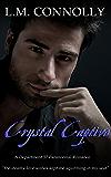 Crystal Captive: Department 57 (Dept 57)