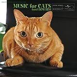猫と音楽の休日