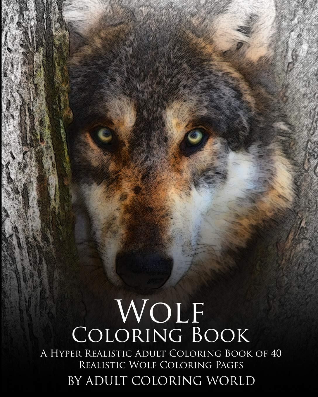 Amazon Com Wolf Coloring Book A Hyper Realistic Adult Coloring