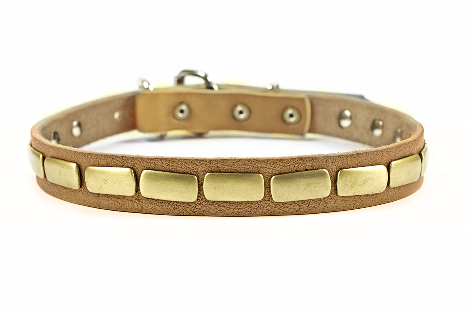 Dean and Tyler  PLATED BEAUTY , Leather Dog Collar with Attractive Antiqued Plate Tan Size 18-Inch by 1-Inch Fits Neck 16-Inch to 20-Inch