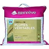 blanrêve Lot de 2 Oreillers Plume Traditionnels 60 x 60