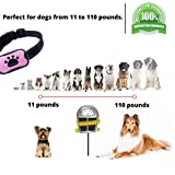 GlobalWay Dog Bark Collar, Humane Anti Barking