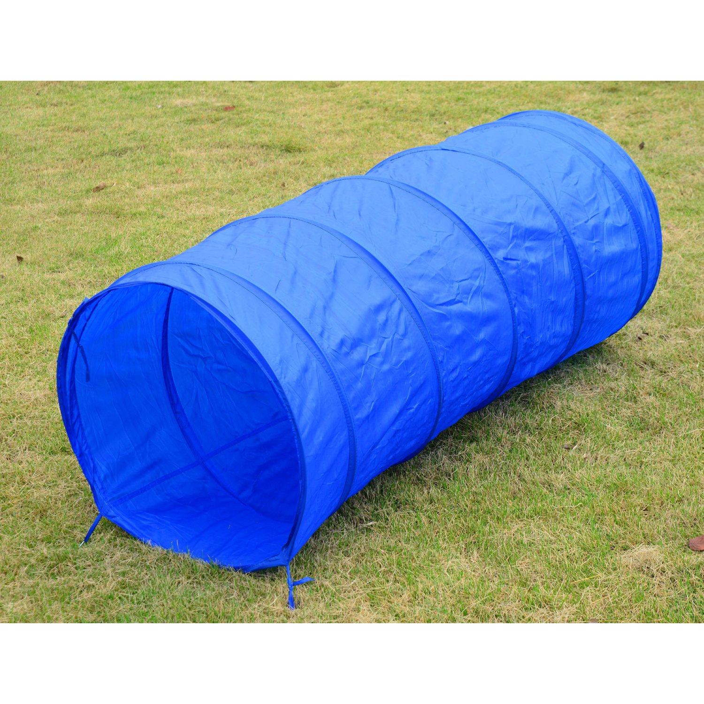 amazon com pawhut dog obstacle agility training kit blue and