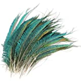 MWOOT 30pcs Natural Peacock Sword Feathers for DIY Craft,Costume,Mask,Wedding Holiday Party Decoration 10-14inch (25…