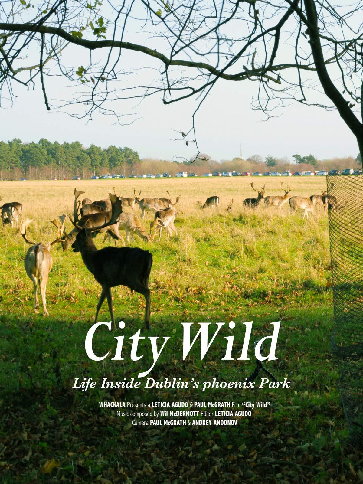 City Wild on Amazon Prime Instant Video UK