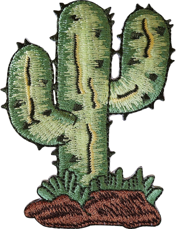 Cactus Planta de hierro en parche/para coser en ropa chaqueta vaquera. Bordado insignia