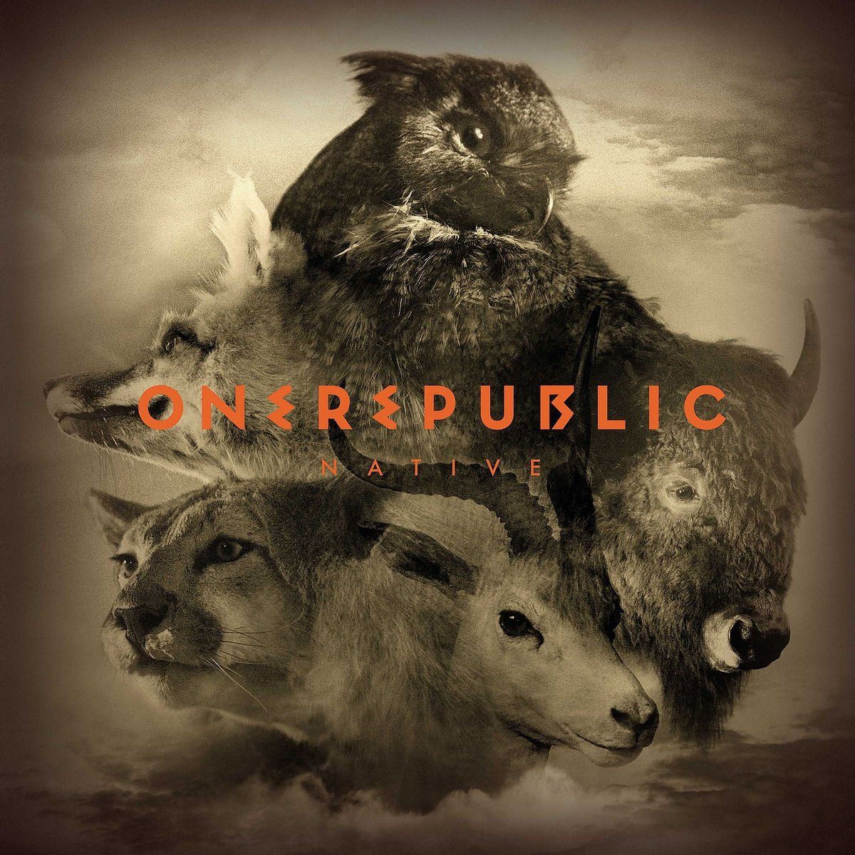 Vinilo : OneRepublic - Native (2 Disc)