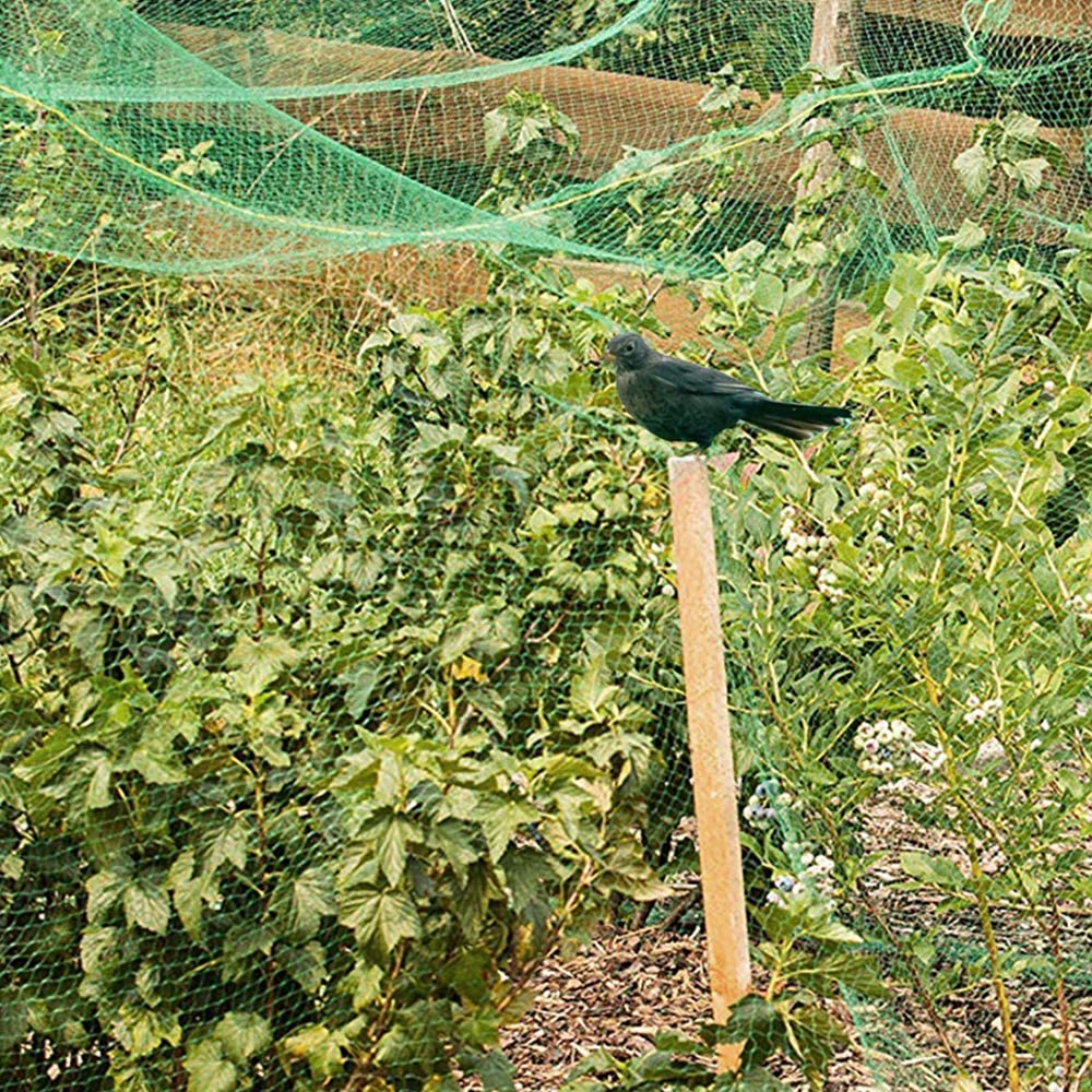 Pond Net Protect Against Rodents Birds for Garden Fruit Crop Cage Protection 2.1*10M Heavy Duty Garden Plant Mesh Netting Fencing Mesh Garden Bird Netting Bird Netting with 20pcs Cable Ties