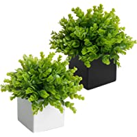 MyGift Artificial Plants in Black & White Square Ceramic Pots, Set of 2